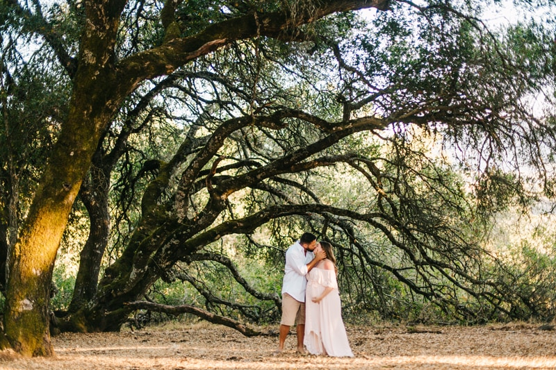 Maternity Photographer, couple kissing under a large tree