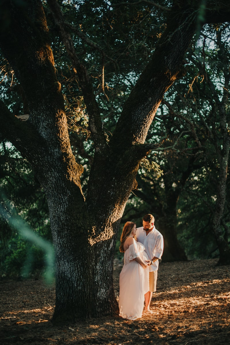 Maternity Photographer, couple standing under a tree during sunset